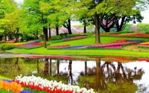 Jardin, Fleurs, Lac, Plantes, Paysage